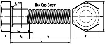 ASME B18.2.1 hex cap screw