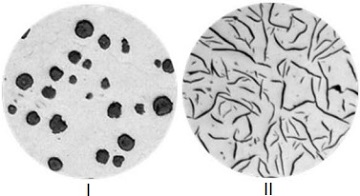 Microstructure of graphite in gray & ductile irons